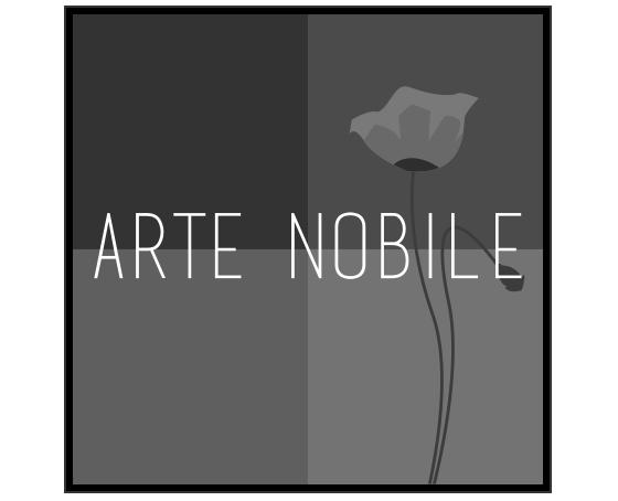 Logo arts maison Arte Nobile